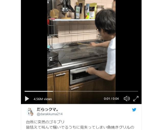 El vídeo de una madre japonesa ahuyentando una cucaracha se vuelve viral y genera varios vídeos editados