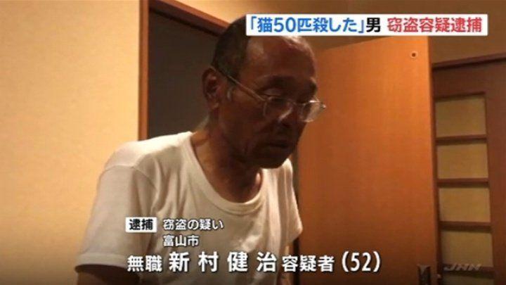 Un japones admite haber matado, al menos, 100 gatos domésticos