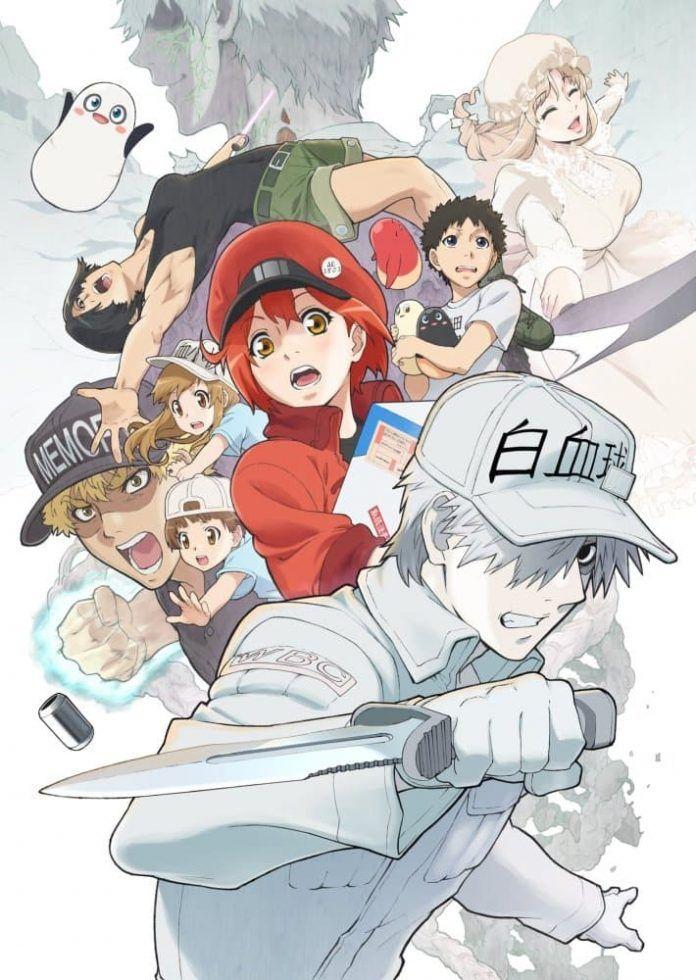 segunda-temporada-hataraku-saibou-enero-2021